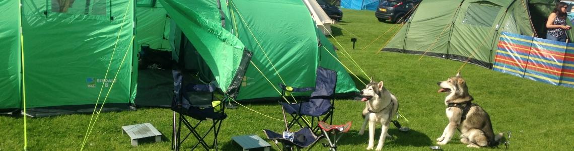 campsite 027